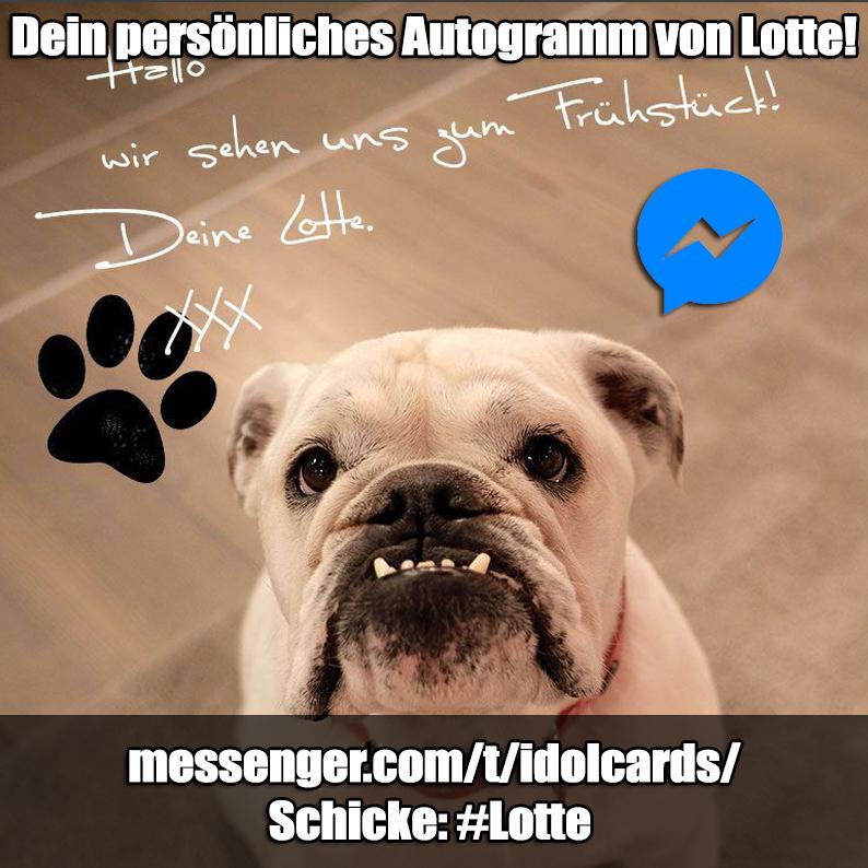 lotte_autogramm_idolcard_messenger
